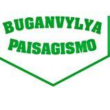 Buganvylya Paisagismo