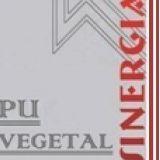 Sinergia Service Ltda.
